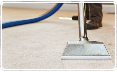 Torrance Carpet Cleaners California 424 210 5860