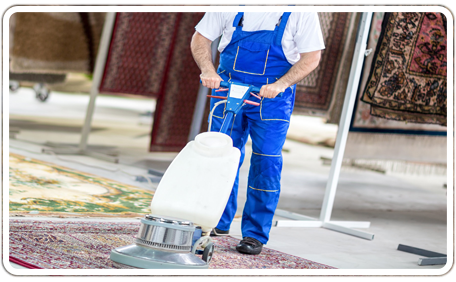 Torrance Carpet Cleaners – California